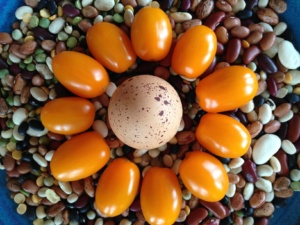 Nicole design with egg tomato and beans smaller
